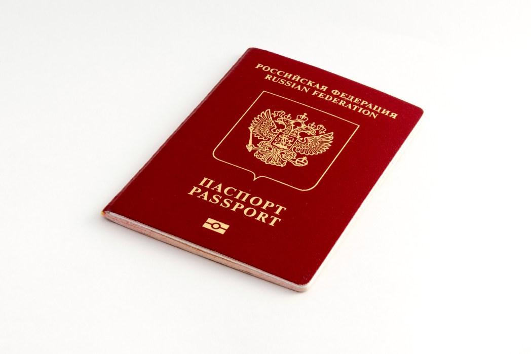 전자여권 앞면은 전자칩 로고가 그려져 있다